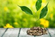 IMPIANTI A BIOMASSA - cos'è, costo, vantaggi e svantaggi 2019